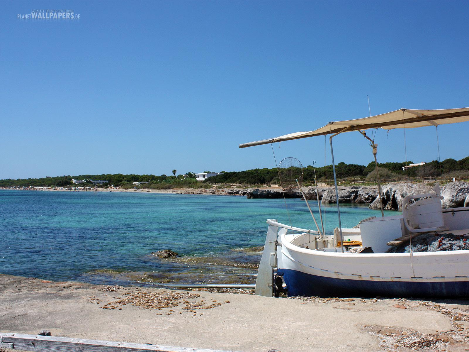 Strand und Palmen Desktop Bilder